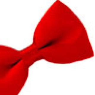 cropped-Red-bowtie-4-jaunty.jpg